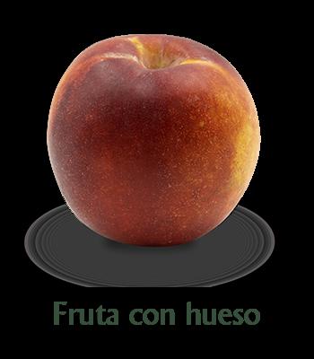 frutas-con-hueso