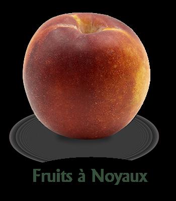 slider-frutas-hueso