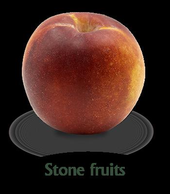 slider-frutas-hueso-en