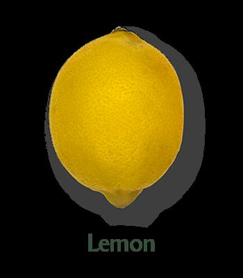 slider-limon-en